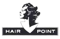 Hair point logo
